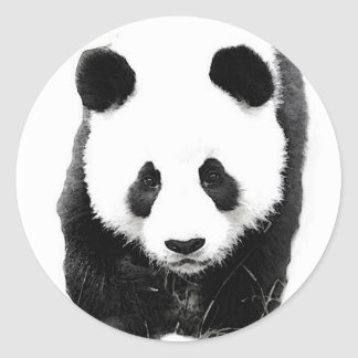 Panda Pegatinas Redondas
