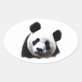 Panda Pegatina Ovalada