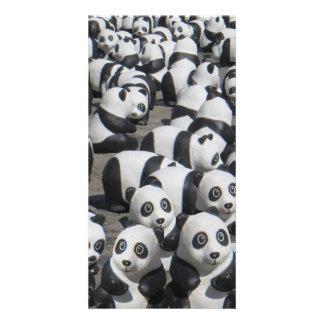 panda personalized photo card