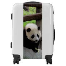 Panda Photograph Luggage