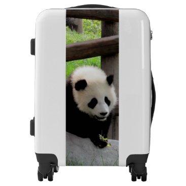 tianxinzheng Panda Photograph Luggage
