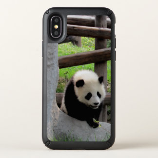 Panda Photograph Speck iPhone X Case