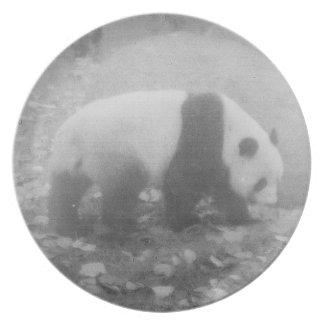 panda plato de cena