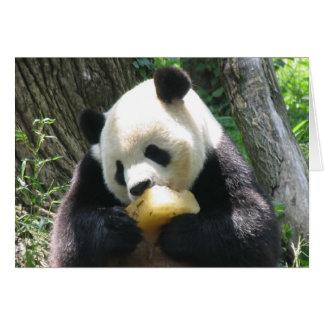 Panda Popsicle Card