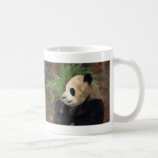 Panda Profile Coffee Mug