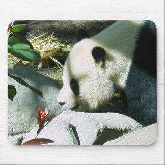 panda profile mouse pad