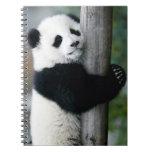 Panda que abraza el poste libreta espiral