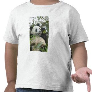 Panda que come el bambú en la nieve, Wolong, Camisetas