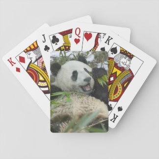 Panda que come el bambú en la nieve, Wolong, Sichu Baraja De Póquer