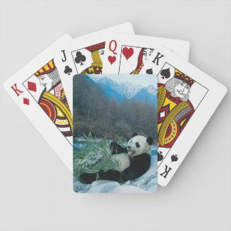 Panda que come el bambú por la orilla del río, Wol Cartas De Póquer