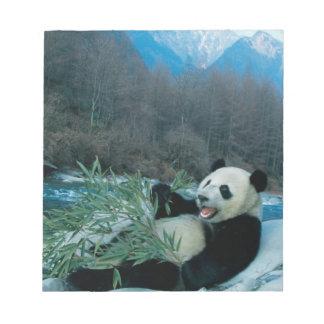 Panda que come el bambú por la orilla del río, Wol Blocs De Notas