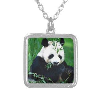 Panda que come las hojas collar plateado
