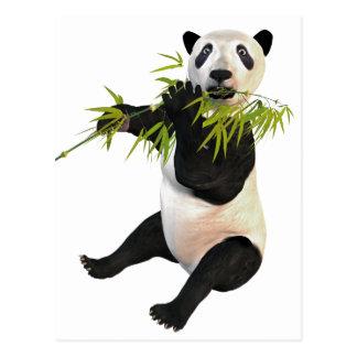 Panda que come las hojas del bambú tarjeta postal