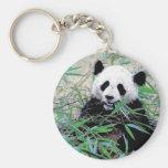 Panda que come las hojas llaveros personalizados