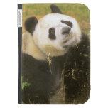 Panda que juega en la paja
