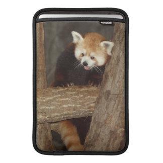 Panda que sube fundas para macbook air