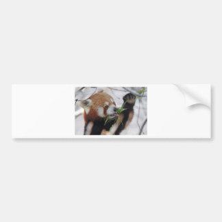panda red animal print cute bumper sticker