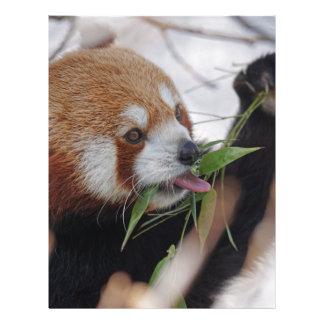 panda red animal print cute letterhead