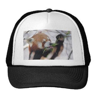 panda red animal print cute trucker hat