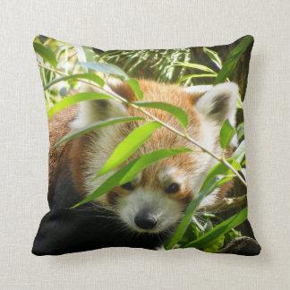 Panda roja 415P2 Almohada