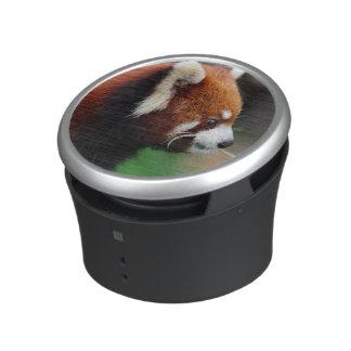 Panda roja altavoz
