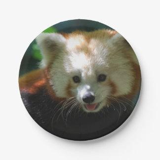 Panda roja asombrosa platos de papel