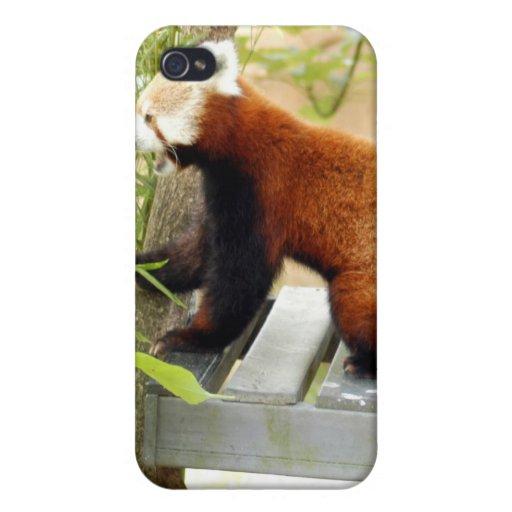 Panda roja china iPhone 4 cobertura
