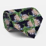 Panda roja corbatas