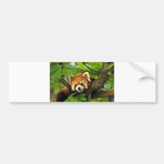 Panda roja Cub Pegatina Para Auto