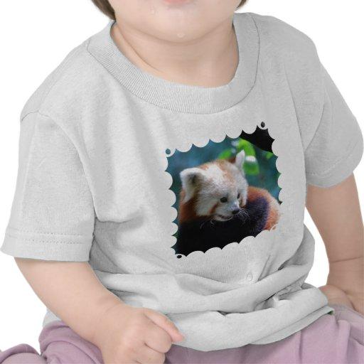 Panda roja dulce camisetas