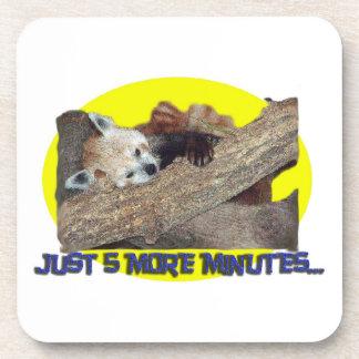Panda roja el dormir de apenas 5 más minutos… posavaso