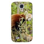 Panda roja i