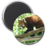 panda roja imanes de nevera