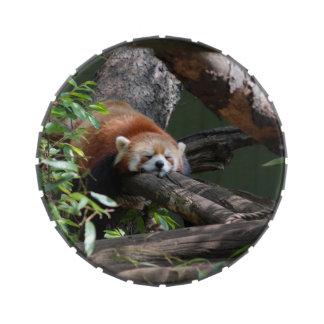 Panda roja jarrones de caramelos