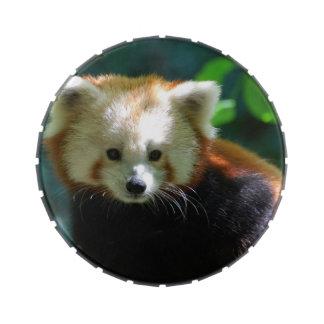 Panda roja frascos de caramelos