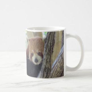 Panda roja linda taza