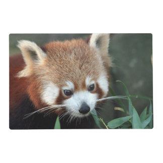 Panda roja, parque zoológico de Taronga, Sydney, Tapete Individual