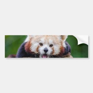 Panda roja pegatina para auto