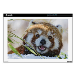 Panda roja portátil 43,2cm skins