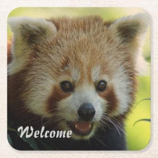 panda roja posavasos desechable cuadrado