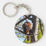 Panda roja que sube abajo el árbol llavero personalizado