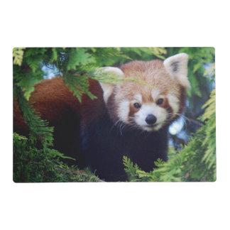 Panda roja tapete individual