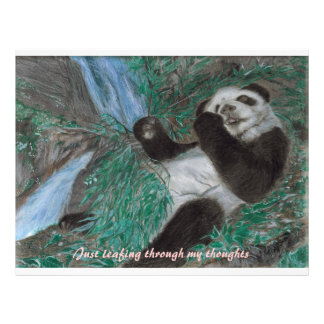 Panda Scrapbook Cover Letterhead