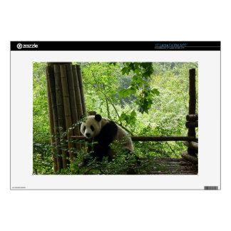 Panda Skins Para Portátil