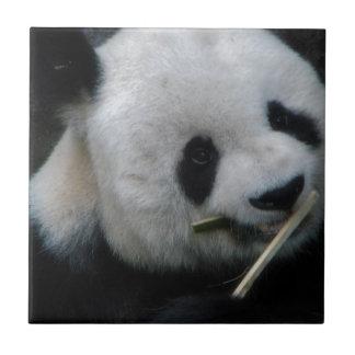 Panda Small Square Tile