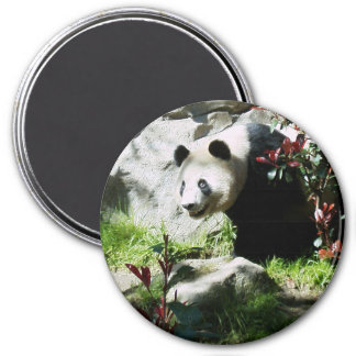 Panda Smile 3 Inch Round Magnet