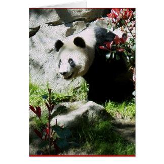 Panda Smile Card