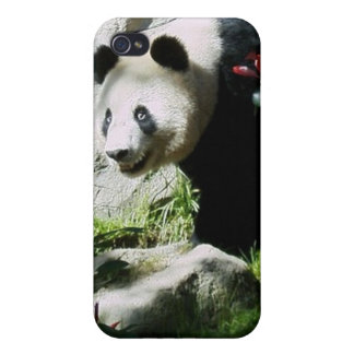 Panda Smile Case For iPhone 4