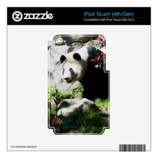 Panda Smile Skin iPod Touch 4G Decals