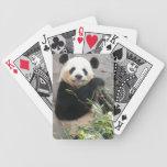 Panda Snack Deck Of Cards